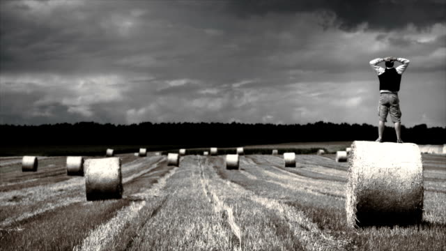 Man over straw haystack on the grain field video