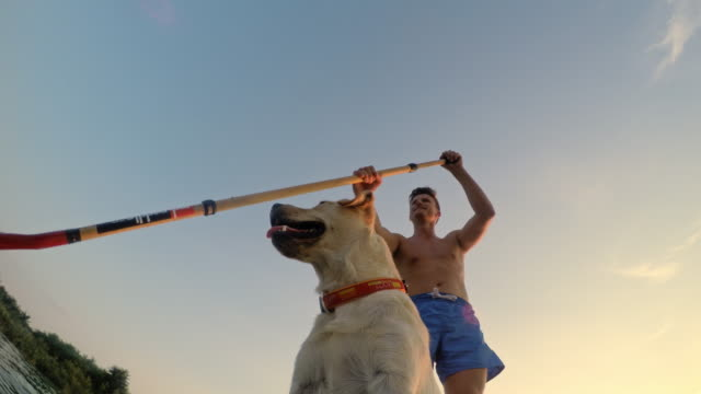 LA WS Man paddleboarding with his dog video