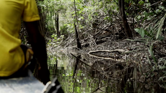 Man paddling at amazon river video