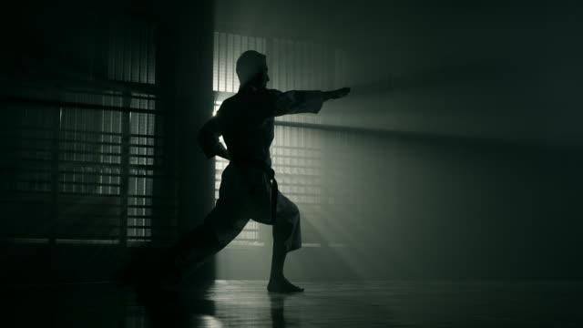 vídeos y material grabado en eventos de stock de hombre realizando karate - artes marciales