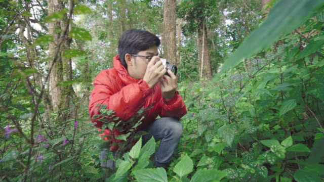 Man Photographing Flower in the Forest video