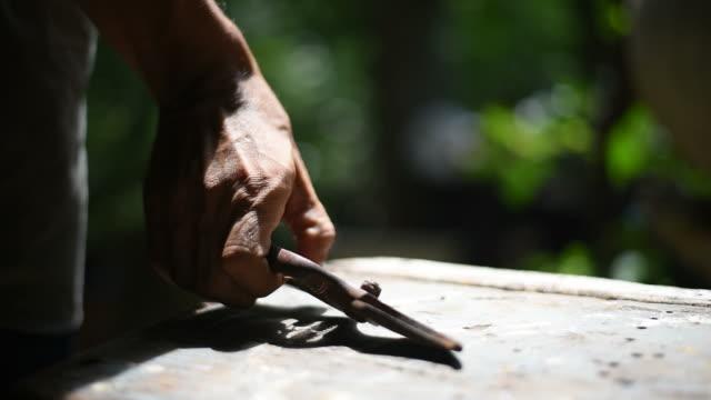 A man picking a gardening scissors to cut bonsai tree. video