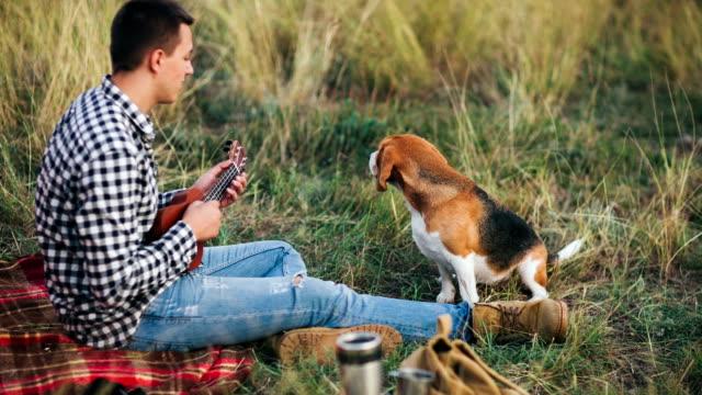 man spela ukulele på camping till hans beaglehund - hund skog bildbanksvideor och videomaterial från bakom kulisserna