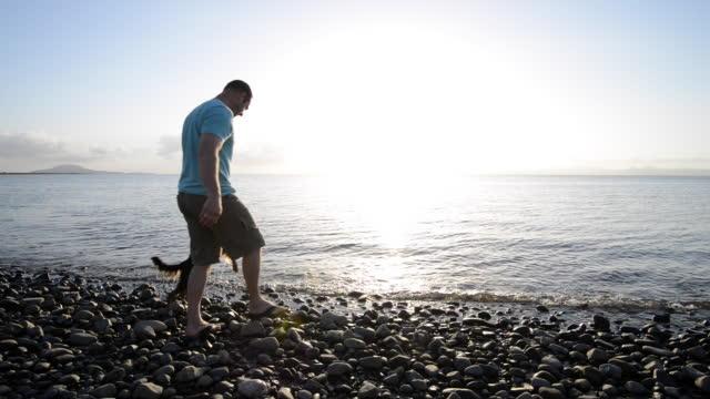 stockvideo's en b-roll-footage met man speelt met hond tijdens zonsondergang op het strand - alleen één mid volwassen man