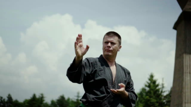 Man practicing karate Man, wearing kimono, performing karate stance in nature. physical position stock videos & royalty-free footage