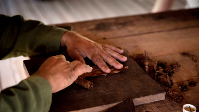 Man processing tobacco leaves and making cigars , Cuba Man processing the tobacco leaves and making cigar with simple tools. Valle de Vinales Cuba. rolling stock videos & royalty-free footage