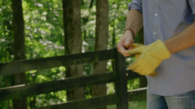 A Man Puts on Work Gloves Surrounded by Forest on a Sunny Day