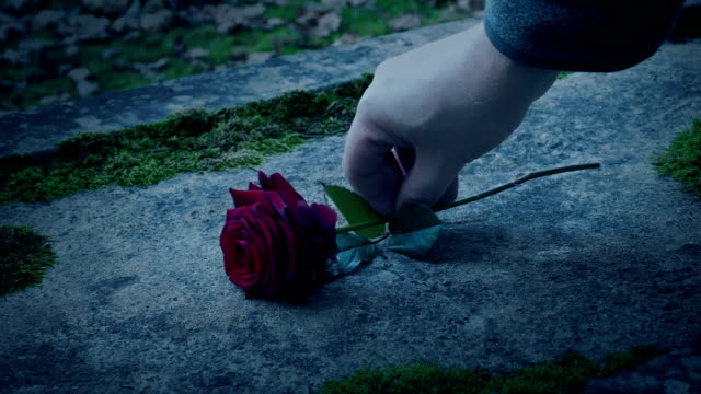 Man Puts Rose On Stone In The Graveyard video