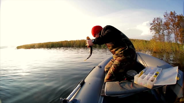 man release a fish from the boat - spranga video stock e b–roll