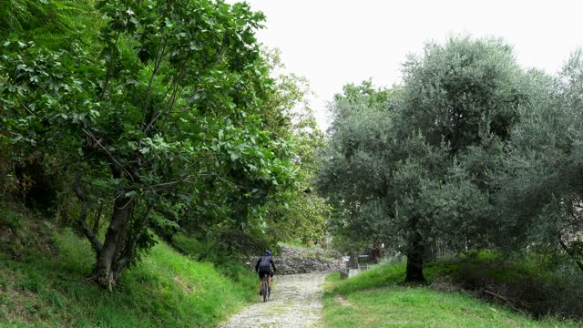 Man rides up mountain bike on an old stone road in nature in Italy, back view. Uphill cyclist on cobblestones in nature in old europe. Bridge stone road, paving stones mountain bike rides. Brick road