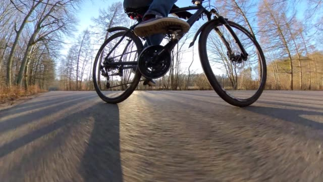 man riding bicycle on asphalt road in forest tracking shot at sunrise - percorso per bicicletta video stock e b–roll