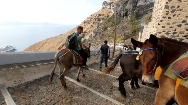 vídeos de stock, filmes e b-roll de burro de equitação homem estrada litoral, passando vários burros permanente por parede - cultura grega