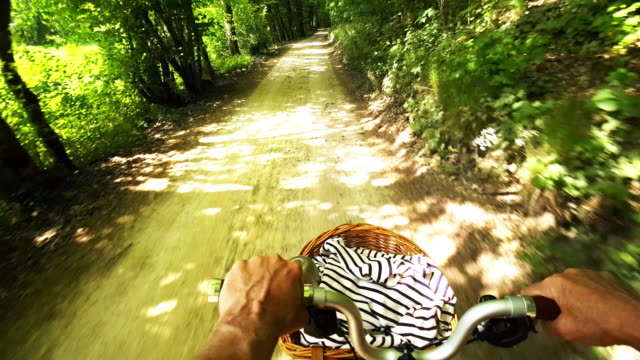 man riding folding bicycle through sunny forest - cestino della bicicletta video stock e b–roll