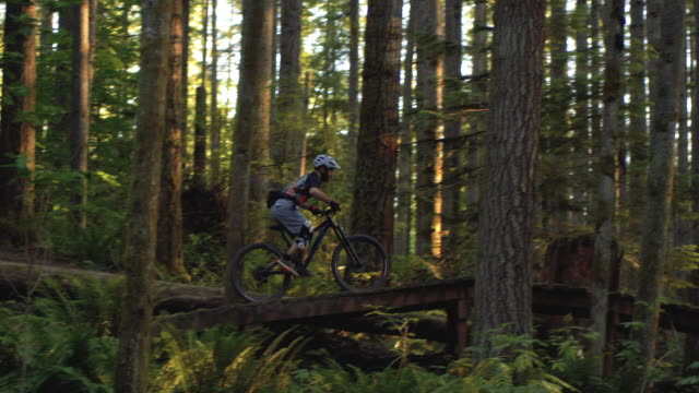 Man Riding Mountain Bike Over Wood Obstacle on Forest Trail Slow Motion