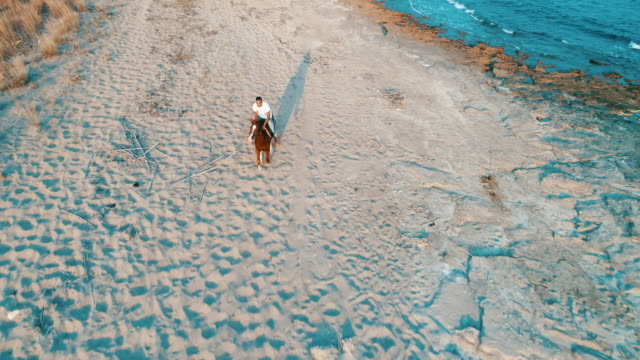 Man riding on horse on the beach over sunset Man riding on horse on the beach over sunset aerial view horseback riding stock videos & royalty-free footage