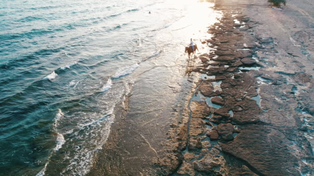 Man riding on horse on the beach over sunset video