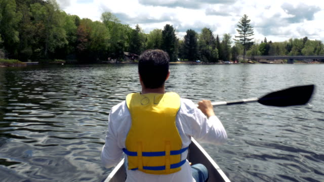 Man Rowing Around Cottage Country Ontario video