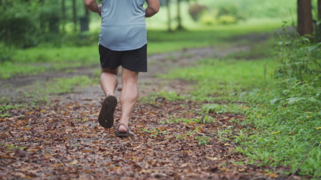 Man runner jogging on country road in rainforest.
