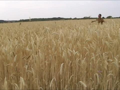vidéos et rushes de running homme dans le champ de blé - bras humain