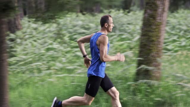 stockvideo's en b-roll-footage met slo mo ds man loopt op een bospad - sportman