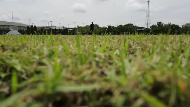 vidéos et rushes de un homme courant sur la pelouse pour exercer - hommes d'âge moyen