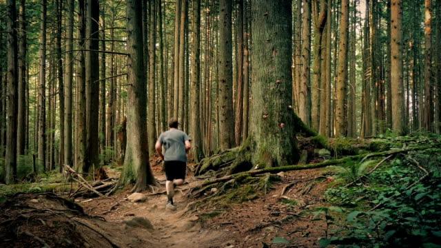 mann läuft auf trail durch bäume - vancouver kanada stock-videos und b-roll-filmmaterial