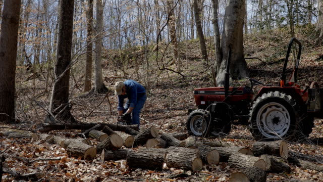 man sawing wood with chainsaw - motosega video stock e b–roll