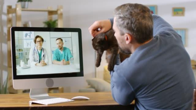 man visar cat till online veterinärer - veterinär, undersökning bildbanksvideor och videomaterial från bakom kulisserna