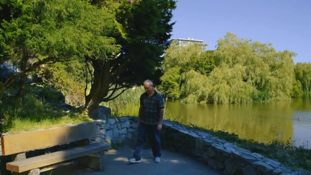 man sits down on a bench in a park by the pond and looks at the ducks - richmond columbia britannica video stock e b–roll