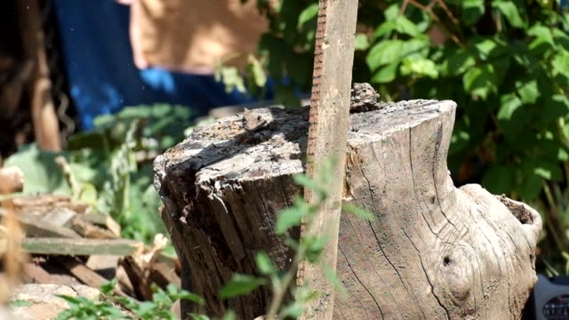 Man smashes rotten boards on an old stump video