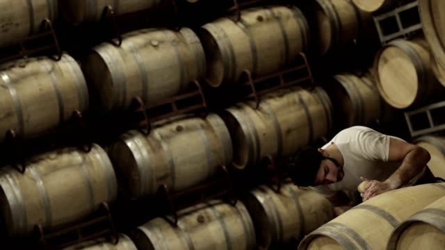 Man smelling wine ntérieur a barrel and noting on a tablet.Wine Barrels in Winery Cellar Bordeaux Wineyard video