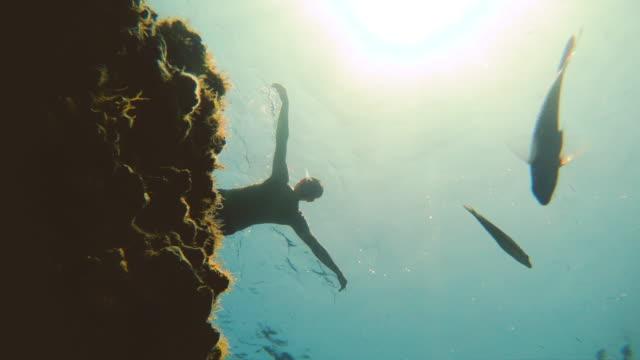 vídeos y material grabado en eventos de stock de hombre nadando entre peces de fondo de los fondos marinos bajo el agua del mar con rayos del sol a través del agua clara. - tubo