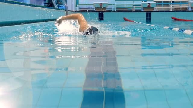 vídeos de stock e filmes b-roll de man swimming crawl in the pool with splash arm - swim arms