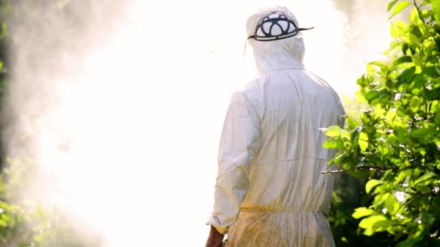 man taking care of his plantation of lemon trees, spraying ecological pesticides in spain, 2019. - insetticida video stock e b–roll