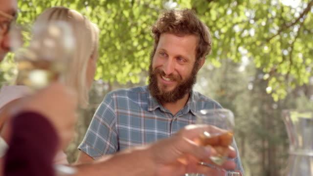 man pratar och skrattar åt picknickbord i solsken - vitt vin glas bildbanksvideor och videomaterial från bakom kulisserna