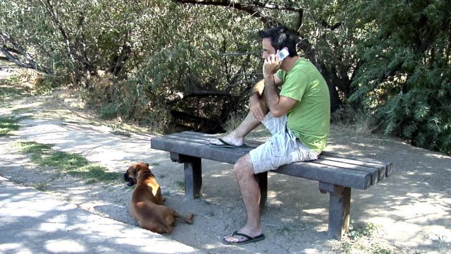 stockvideo's en b-roll-footage met man talking on cell phone with pet dog - alleen één mid volwassen man
