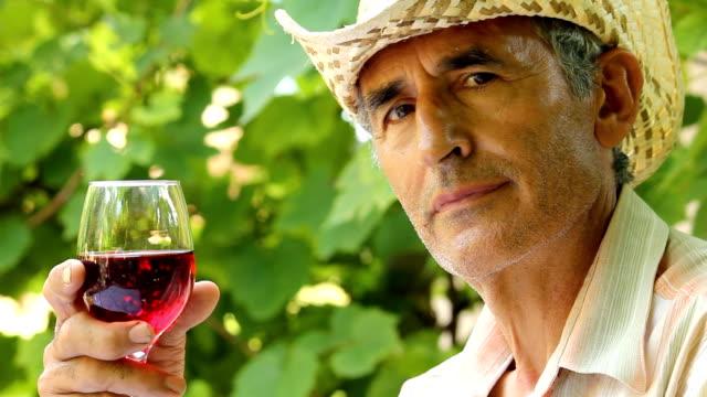 Man Tasting Wine video