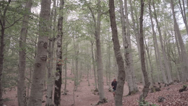 Man trail running in the forest – film