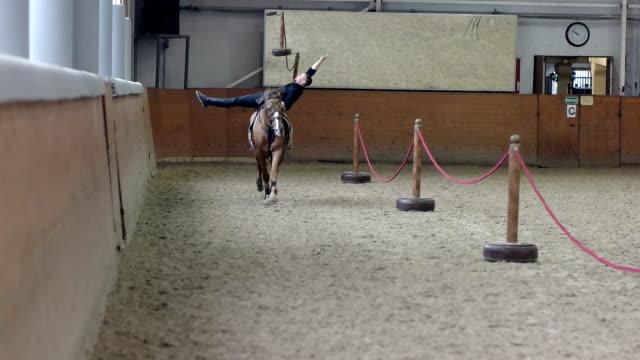 アリーナで馬に乗る男のトリック。男は馬に乗ってスタントを行います。乗馬は、馬が横になっている男。 - 動物に乗る点の映像素材/bロール