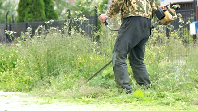 Man trimming grass in a garden using a lawnmower video