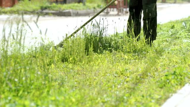 Man trimming grass in a garden using a lawnmower video