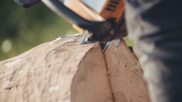 Man using chainsaw and cutting wood. video