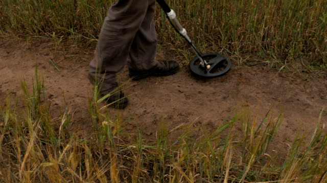 Man using Metal Detector on a Field Road. video