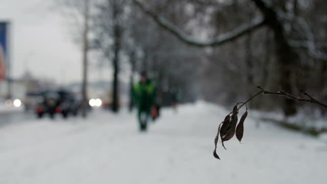 Bидео Man walking along snowy winter road