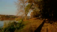 istock man walking on a autumn riverbank 468680684