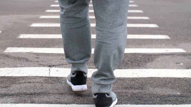 man walking on a zebra - пешеход стоковые видео и кадры b-roll