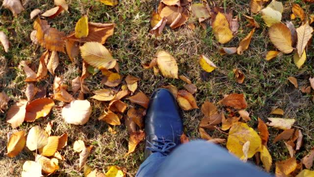 秋の紅葉でいっぱいの地面を歩いている男4k スローモーション60fps - 革点の映像素材/bロール
