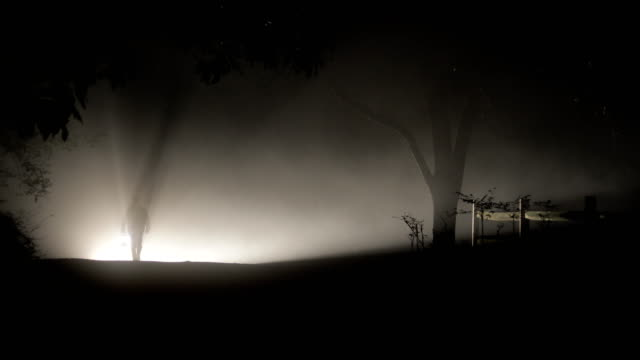 Man Walking Out from Fog on a Dark Night Man in silhouette with lantern walking out from heavy fog down a dark road past a fence and under trees at night ghost stock videos & royalty-free footage
