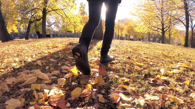 Man Walking through Autumn Leaves video