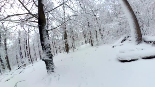 Man walking through beautiful winter forest, 360 degree, VR, Little planet effect video
